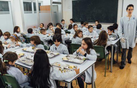 Colegio Camí 15