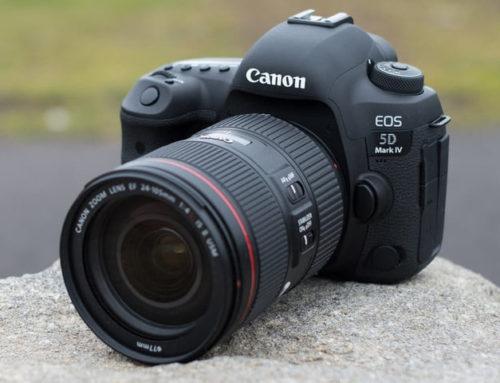 Las mejores cámaras réflex 2019 – 2020
